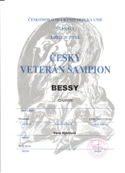 bessy_daimar_veteran_sampion